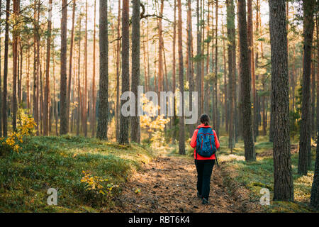 Active Young Adult Caucasian Woman Backpacker Walking In Autumn Green Forest. Active Lifestyle In Fall Age Nature During Sunset.
