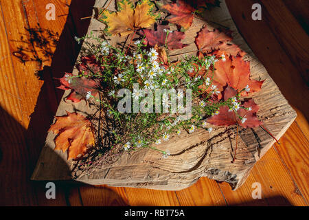Fresh flowers and beautiful autumn leaves on a wooden board. Still life. - Stock Photo