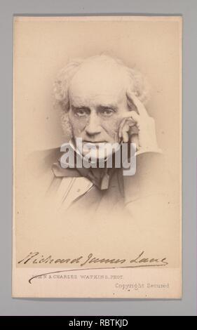 -Richard James Lane- - Stock Photo