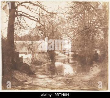 -View of a House in the Woods, with a Waterlogged Road- - Stock Photo