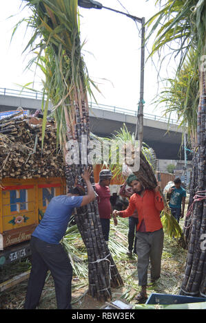 Bangalore, India. 12th Jan, 2019. People carry bundles of sugarcane outside a wholesale market on the eve of Makar Sankranti Festival, in Bangalore, India, Jan. 12, 2019. People exchange pieces of sugarcane to signify sweetness during Makar Sankranti, a Hindu festival which marks the return of the sun to the northern hemisphere. Credit: Stringer/Xinhua/Alamy Live News - Stock Photo