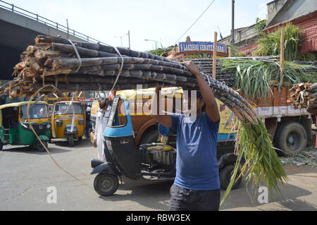 Bangalore, India. 12th Jan, 2019. A man carries a bundle of sugarcane outside a wholesale market on the eve of Makar Sankranti Festival, in Bangalore, India, Jan. 12, 2019. People exchange pieces of sugarcane to signify sweetness during Makar Sankranti, a Hindu festival which marks the return of the sun to the northern hemisphere. Credit: Stringer/Xinhua/Alamy Live News - Stock Photo