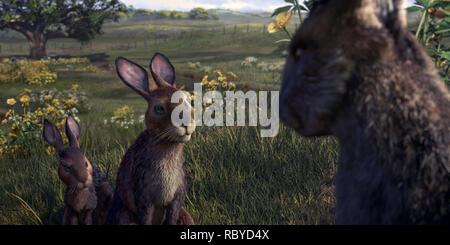 Watership Down is a 2018 TV mini-series.    This photograph is for editorial use only and is the copyright of the film company and/or the photographer assigned by the film or production company and can only be reproduced by publications in conjunction with the promotion of the above Film. A Mandatory Credit to the film company is required. The Photographer should also be credited when known. - Stock Photo