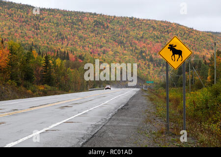 A traffic sign warns drivers to be aware of the presence of moose on the Gaspé Peninsual of Quebec, Canada. - Stock Photo