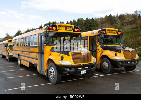 School buses in the province of Quebec, Canada. The bear the sign Ecoliers (for scholars). - Stock Photo