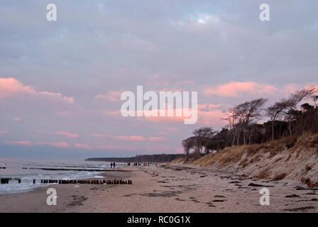 Ostsee, Darß - Stock Photo