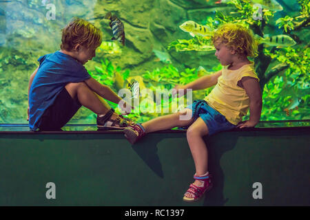 Little Boy and girl watching tropical coral fish in large sea life tank. Kids at the zoo aquarium - Stock Photo