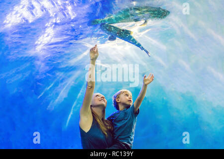 Mother and son looking at fish in a tunnel aquarium - Stock Photo