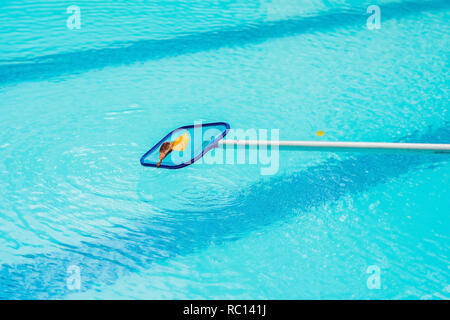 Cleaning swimming pool with cleaning net in the morning - Stock Photo