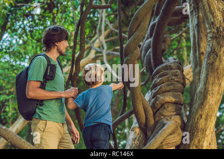 father and son watching tropical lianas in wet tropical forests - Stock Photo