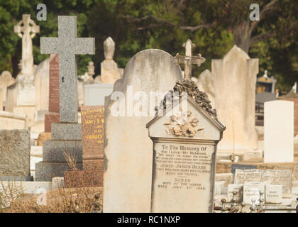 View of multiple headstones at the West Terrace Cemetery in Adelaide, South Australia, Australia. - Stock Photo