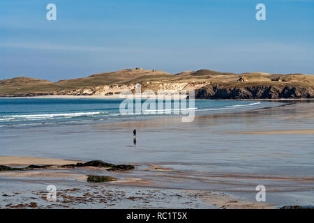 Solitary person wading through wash in Balnakeil Bay near Durness in Sutherland Highland Scotland with Faraid Head behind - Stock Photo