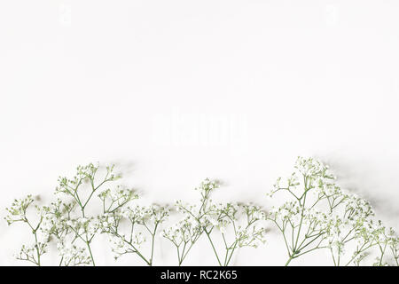 Styled stock photo. Feminine wedding, birthday composition with baby's breath Gypsophila flowers. White table background. Empty space. Floral frame, web banner. Top view. - Stock Photo