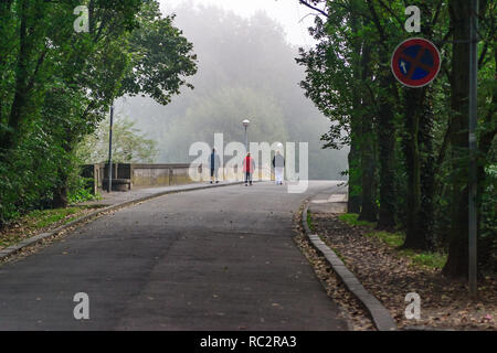Aged woman training Nordic Walking during early autumn and a misty day in Bad Honnef, Germany - Stock Photo