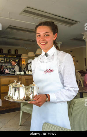 Young waitress at Betty's Cafe Tea Rooms, Parliament Street, Montpellier Quarter, Harrogate, North Yorkshire, England, United Kingdom - Stock Photo