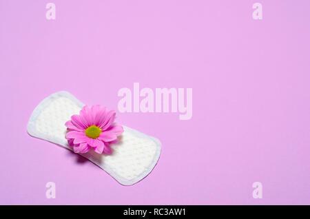 Woman's Sanitary Pad and Gerbera Daisy Flower on Pink Background, Feminine Hygiene Concept - Stock Photo