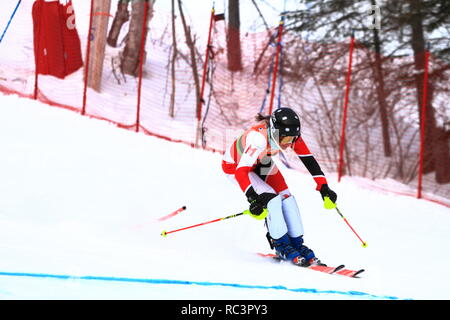 Quebec, Canada. 13th Jan 2019. Sarah Mains of Canada competes in the Super Serie Sports Experts Ladies slalom race held at Val Saint-Come Credit: richard prudhomme/Alamy Live News - Stock Photo