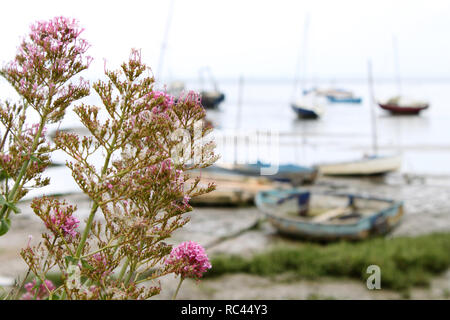 Boats at Leigh-on-Sea, Essex, UK - Stock Photo