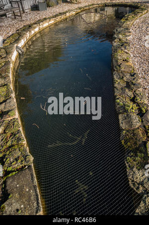Winter sunlight on a very large garden pond at a private home in Sheffield, South Yorkshire - Stock Photo