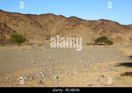 in africa sudan berenice  the antique temple of the black pharaohs in the middle of the desert - Stock Photo