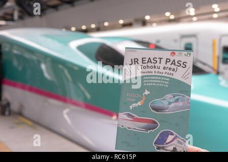 JR EAST PASS (Tohoku area), with the Hayabusa Shinkansen at background. Flexible 5 Day Pass Tohoku Area Tourist Pass. - Stock Photo