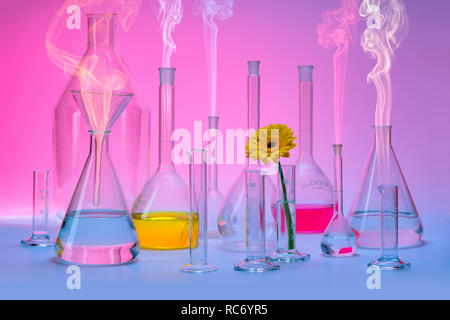 variety of partly filled laboratory glassware including a flower head and some smoke in colorful ambiance - Stock Photo