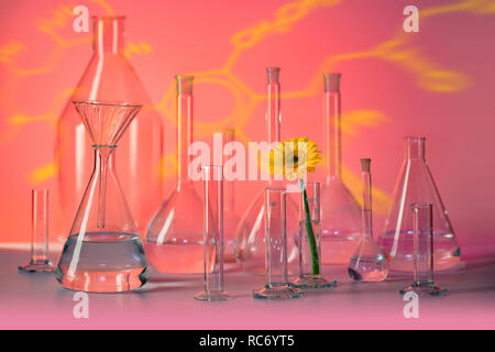 variety of partly filled laboratory glassware including a flower head in red ambiance - Stock Photo