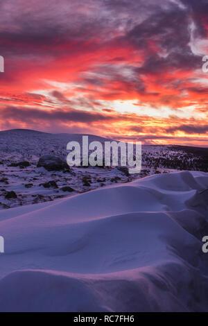 Winter landscape a sunset - Stock Photo