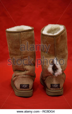 Torn UGG Boots. UGG Boots with hole. Ripped Ugg Boot. UGG Boot is torn along seam. Shearling. Sheepskin. UGG Australia. Worn Out UGG Boots. UGGS. Torn - Stock Photo