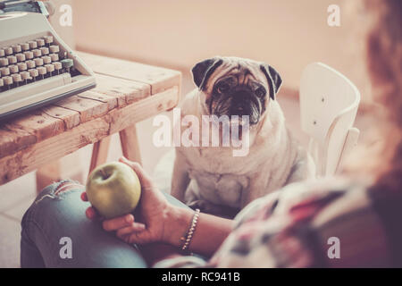 Lovely adorable sweet old dog pug looking at his best friend owner with love - vintage background with typewriter - work break and leisure activity -  - Stock Photo