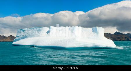 Iceberg at the entrance of King Edward Cove, Grytviken, Cumberland Bay, South Georgia, Antarctica - Stock Photo