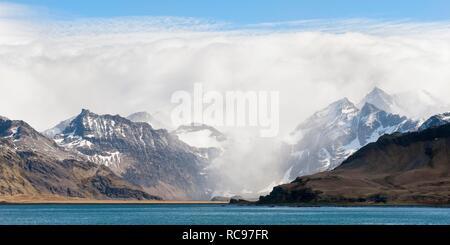 King Edward Cove, Grytviken, Cumberland Bay, South Georgia, Antarctica - Stock Photo