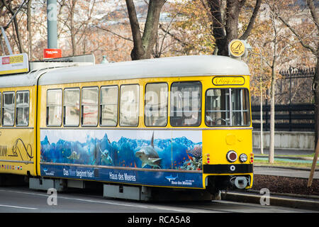 Nostalgic traditional yellow 'Vienna Ring Tram', a tourist tram line at circling Vienna city centre along Ringstrasse. Austria. - Stock Photo