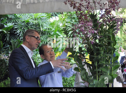 Czech Prime Minister Andrej Babis (left) continued his visit of Singapore on January 15, 2019. Babis visited the Singapore National Orchid Garden where one of the orchids now bears his name. When christening the 'dendrobium Andrej Babis,' he told reporters it was a local tradition but it was unusual to name flowers after a man. (CTK Photo/Radek Jozifek) - Stock Photo