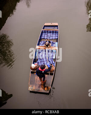 Viewed from above - a chauffeur from Scudamore's punting tours guides his punt full of sight seeing public along the river Cam behind the colleges. - Stock Photo