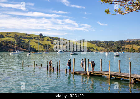 Akaroa, New Zealand - January 6 2019: Swimmers cool off in the bay on a hot summer evening - Stock Photo