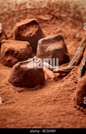 Delicious gourmet handmade chocolate pralines with a coating of fine cacao powder and copy space - Stock Photo