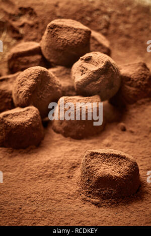 Speciality handmade chocolate pralines in a bed of cacao powder with focus to a single confection in the foreground - Stock Photo