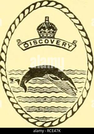 . Discovery reports. Discovery (Ship); Scientific expeditions; Ocean; Antarctica; Falkland Islands. DISCOVERY REPORTS Issued by the National Institute of Oceanography VOLUME XXXI. CAMBRIDGE AT THE UNIVERSITY PRESS 1962. Please note that these images are extracted from scanned page images that may have been digitally enhanced for readability - coloration and appearance of these illustrations may not perfectly resemble the original work.. Institute of Oceanographic Sciences (Great Britain); National Institute of Oceanography of Great Britain; Great Britain. Colonial Office. Discovery Committee.  - Stock Photo
