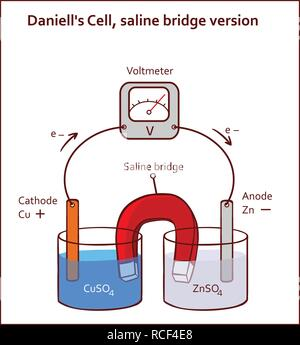 Daniell's Cell, saline bridge version vector illustration - Stock Photo