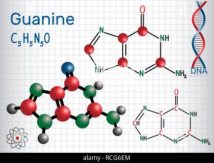Guanine (G, Gua) - purine nucleobase, fundamental unit of the genetic code in DNA and RNA. Structural chemical formula and molecule model. Sheet of pa - Stock Photo