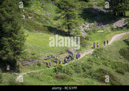 Hiking in Parco Nazionale del Gran Paradiso or Gran Paradiso National Park, Aosta Valley, Italy. - Stock Photo