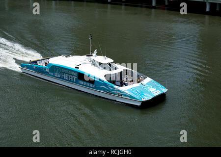 A CityCat catamaran on the Brisbane River, Brisbane, Queensland, Australia - Stock Photo