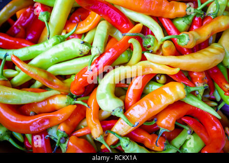 chilli on the market. Multicolored peppers - Stock Photo
