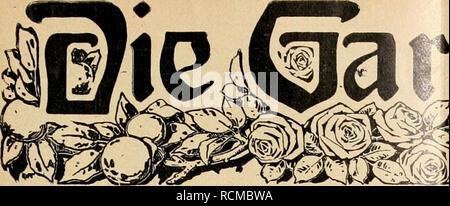 . Die Gartenwelt. Gardening. tenujclt Illustrierte Wochenschrift für den gesamten Gartenbau. Jahrgang XVI. 25. Mai 1912. Nr. 21. Nachdruck und Nachbildung aus dem Inhalte dieser Zeitschrift werden strafrechtlich verfolgt. Stauden. Primula rosea grandiflora. Von Alfred Dreyer, Obergärtner der Staudenkulturen der Firma Gebrüder Mertens, Zürich. (Hierzu drei Abbildungen.) Nicht mit Unrecht wird Primula rosea grdfl. als Edelstein oder Perle unter den winterharten Primeln bezeichnet. Wer schon einmal Gelegenheit hatte, sie zu hunderten vereint zu sehen, sei es in Kulturen oder in Anlagen, wird  - Stock Photo