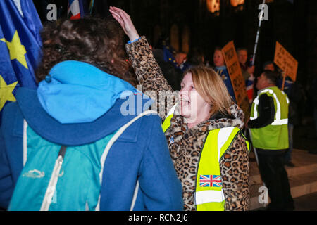 Westminster, London, UK, 15th Jan 2019. A Brexit supporters shouts at Remainers. Pro and Anti Brexit protesters rally in Parliament Square and at the Houses of Parliament in Westminster ahead of and during the vote on Theresa May's Brexit deal. Credit: Imageplotter News and Sports/Alamy Live News - Stock Photo