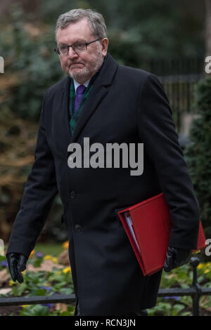 London, UK. 15th January, 2019. Ministers arrive for the weekly cabinet meeting at 10 Downing Street on the day of the 'meaningful vote' on Prime Minister's Theresa May's Brexit withdrawal deal. Credit: Guy Corbishley/Alamy Live News - Stock Photo