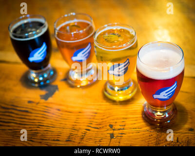 Beer samples from the tasting room of the Phillips Brewing & Malting Co., a popular Canadian microbrewery in Victoria, British Columbia, Canada. - Stock Photo