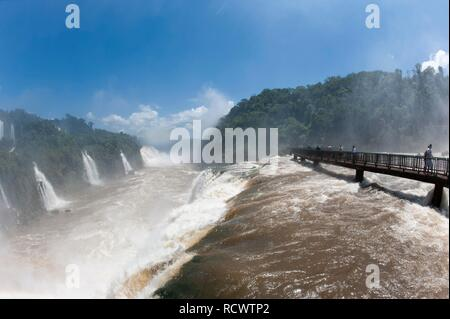 Iguazu or Iguaçu falls viewed from the Brazilian side, Unesco National Park, Misiones Province, Argentina, South America