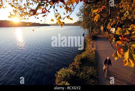 Baldeneysee Lake, reservoir of the river Ruhr, towpath, walkers, autumn, Essen, North Rhine-Westphalia - Stock Photo